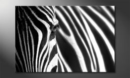 Das Wandbild<br>'Animal Stripes'