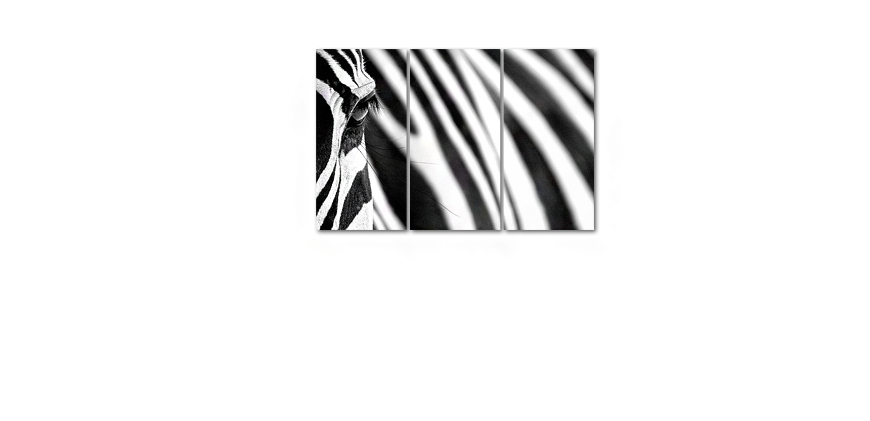 Das Wandbild Animal Stripes in 120x80cm