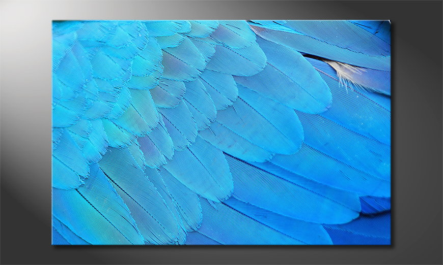Das Leinwandbild Bird Feathers