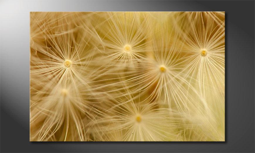 Das Leinwandbild Dandelion Closeup