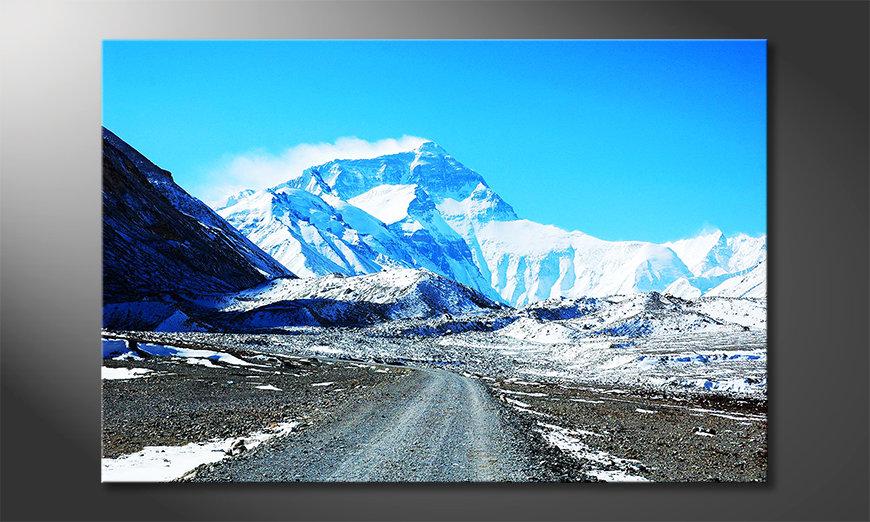 Das Leinwandbild Icy Beauty