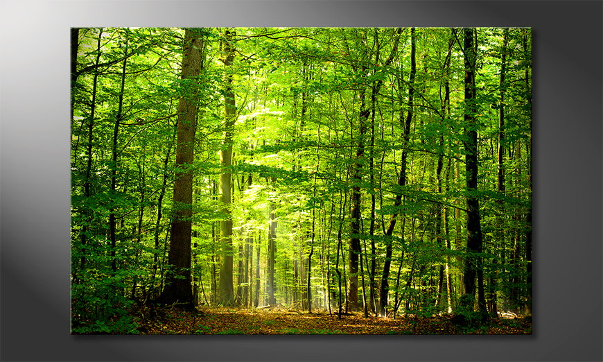 Das Leinwandbild Into the Forest