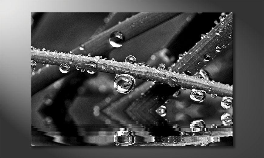 Das Leinwandbild Water Drops