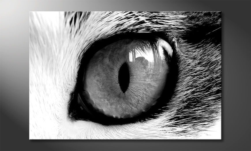 Das Wandbild Cats Eye