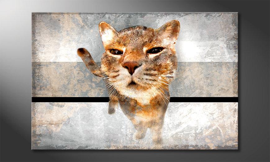 Das Wandbild Smooth Cat