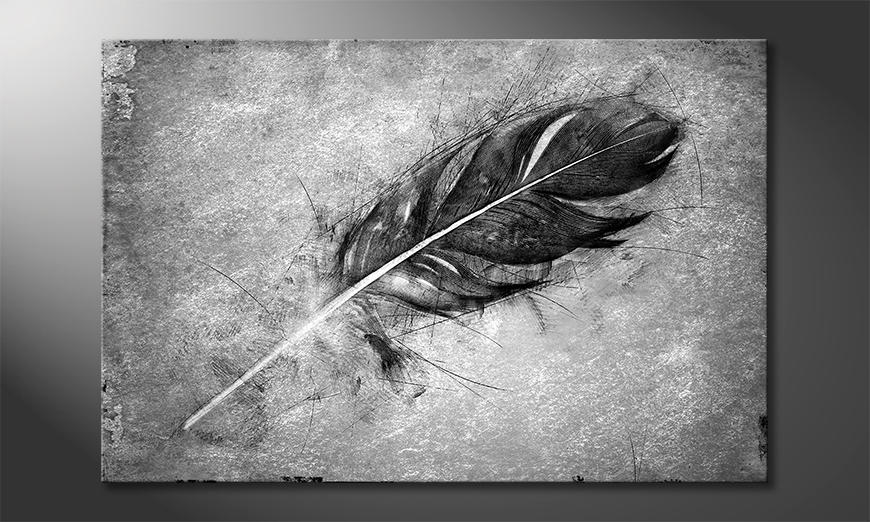Das exklusive Bild Beautiful Feather