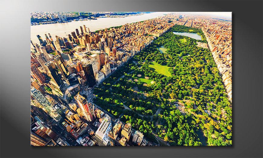 Das exklusive Bild Central Park