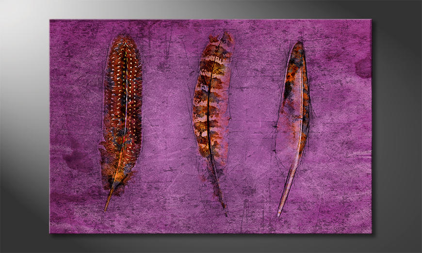 Das exklusive Bild Feathers and Purple