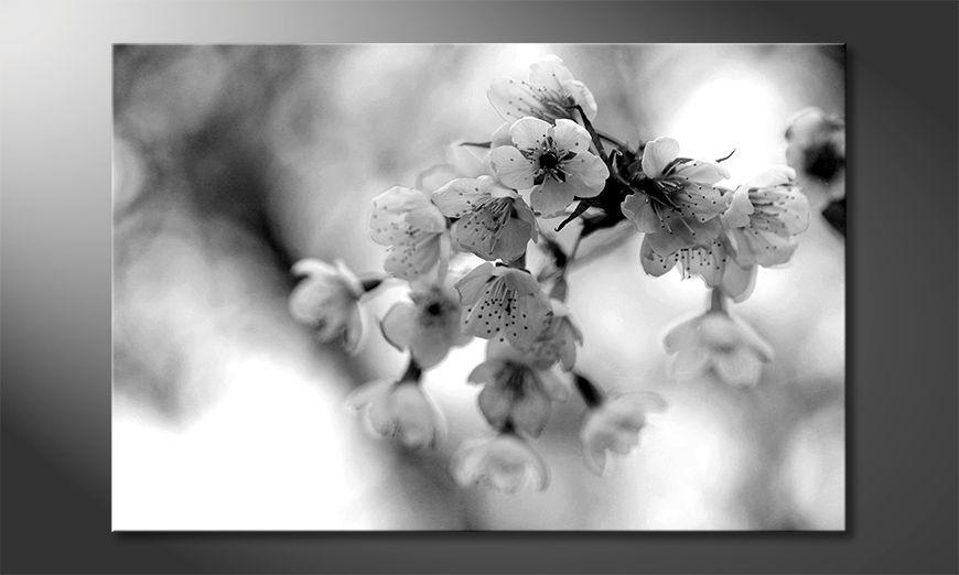 Das gedruckte Bild Cherry Blossoms