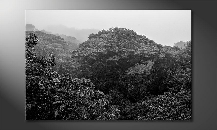 Das gedruckte Bild Jungle