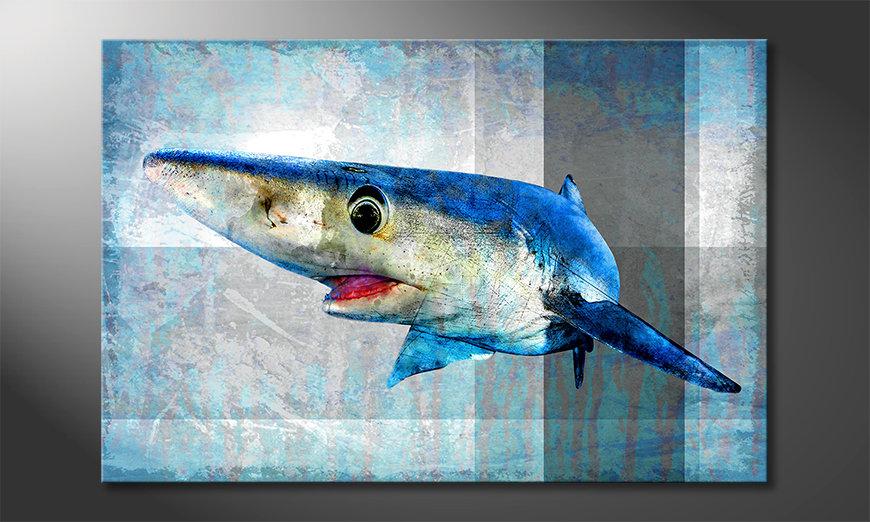 Das gedruckte Bild Mr. Shark