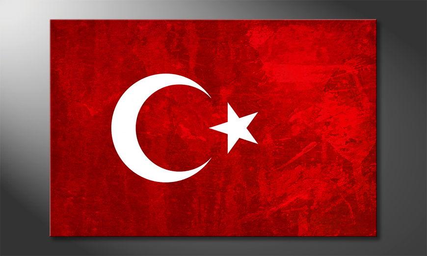 Das gedruckte Leinwandbild Türkei