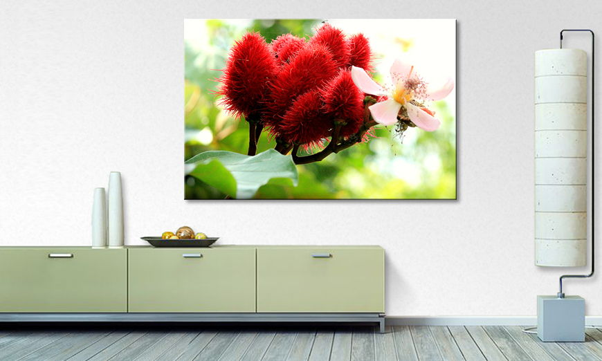 Das moderne Bild Beauty Red Bud