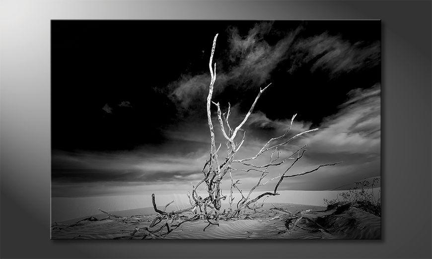 Das moderne Leinwandbild Desert Landscape