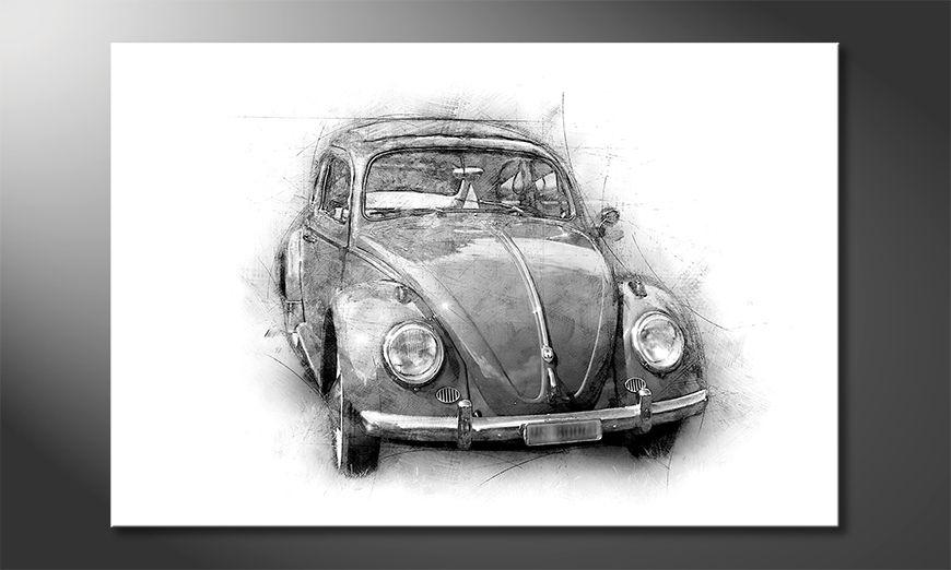 Das schöne Bild Beetle
