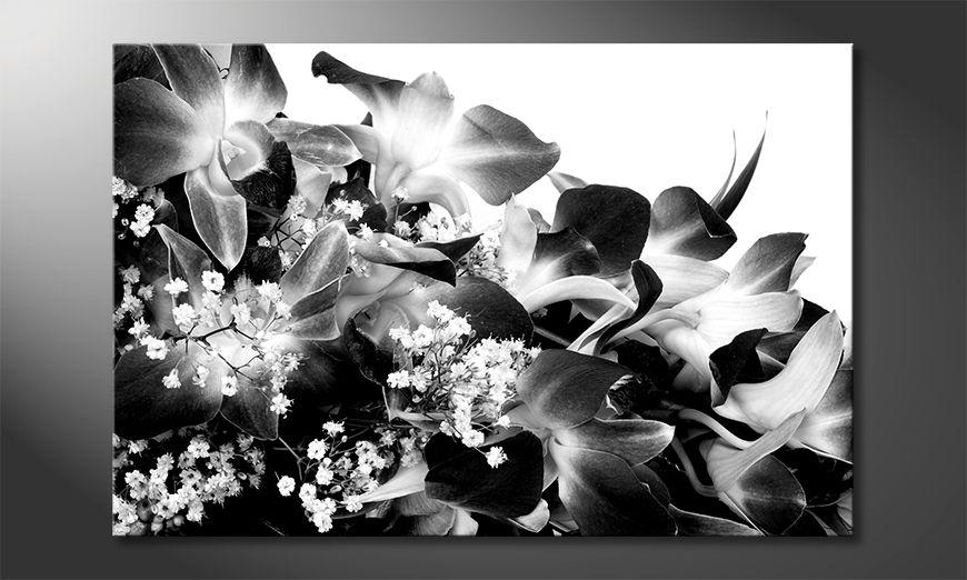 Das schöne Bild Orchid Blossoms