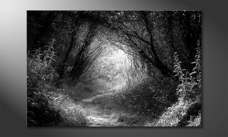 Das schöne Bild Way In Deep Forest