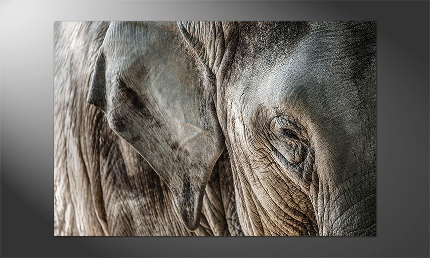 Das Premium Poster Elephantcloseup