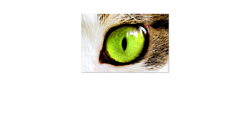 Das-Premium-Poster-Green-Eyes