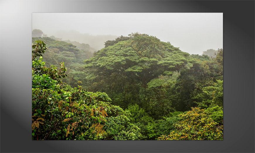 Das Premium Poster Jungle