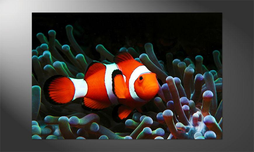 Das Premium Poster Nemo