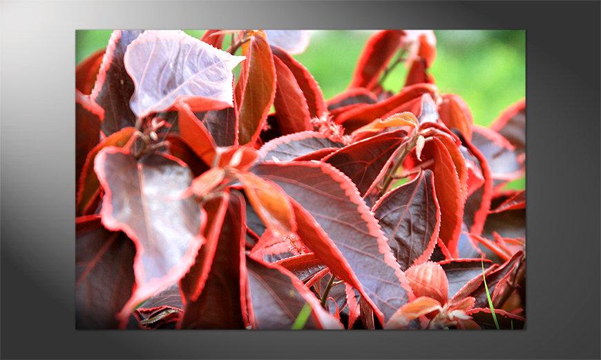Das brilliante Poster: Beauty Plant