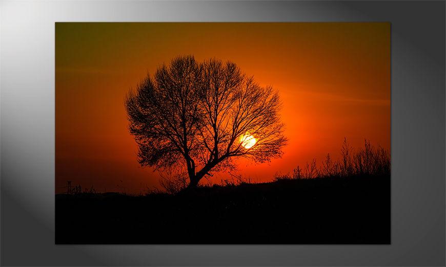 Das einmalige Premium Poster Sunset 5