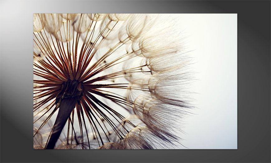 Das schöne Premium Poster Big Dandelion