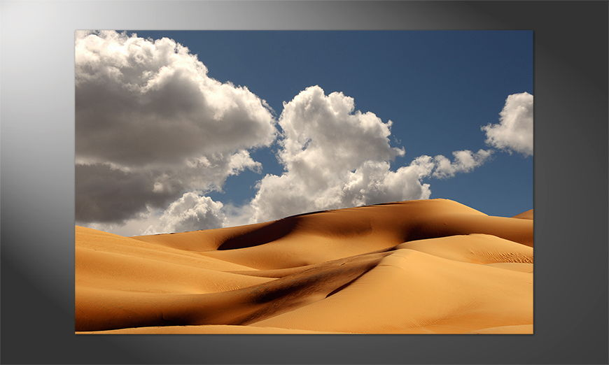 Das schöne Premium Poster Sanddunes