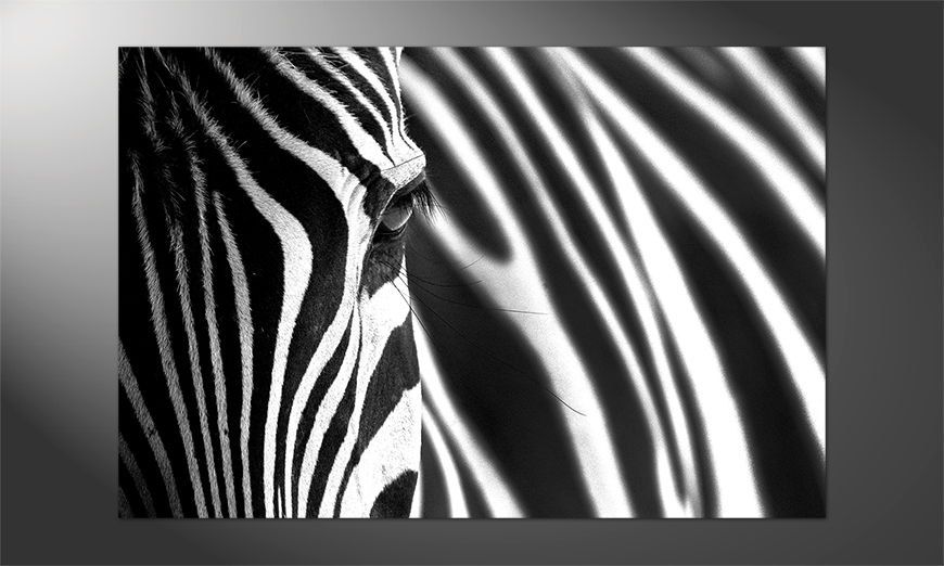 Das-tolle-Premium-Poster-Animal-Stripes