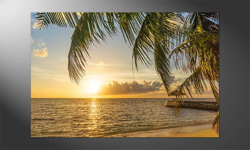 Natur Pur: Das Poster Maldives