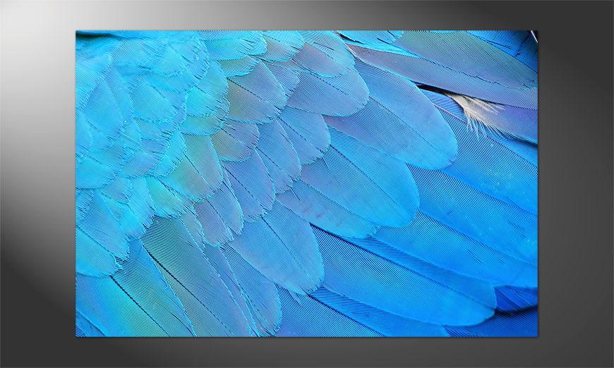 Unser Premium Poster Bird Feathers