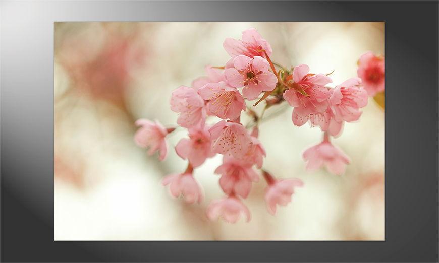 Unser Premium Poster Cherry Blossoms