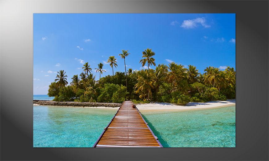 Urlaubsstimmung Pur: Tropical Maldives