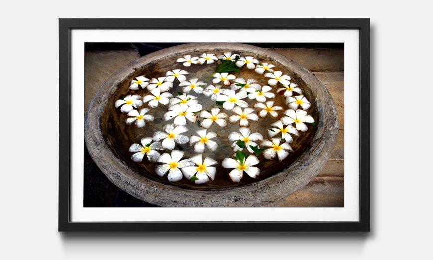 Bild gerahmt Blossoms