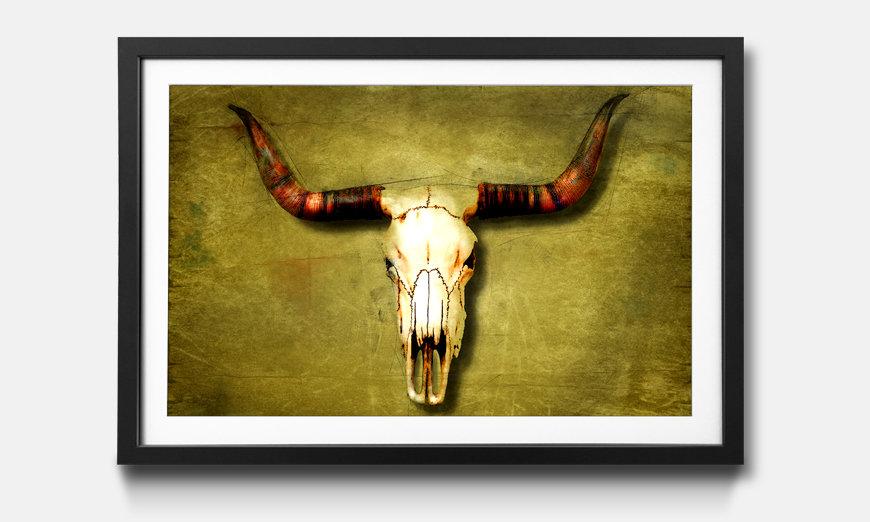 Bild gerahmt Buffalo Bull