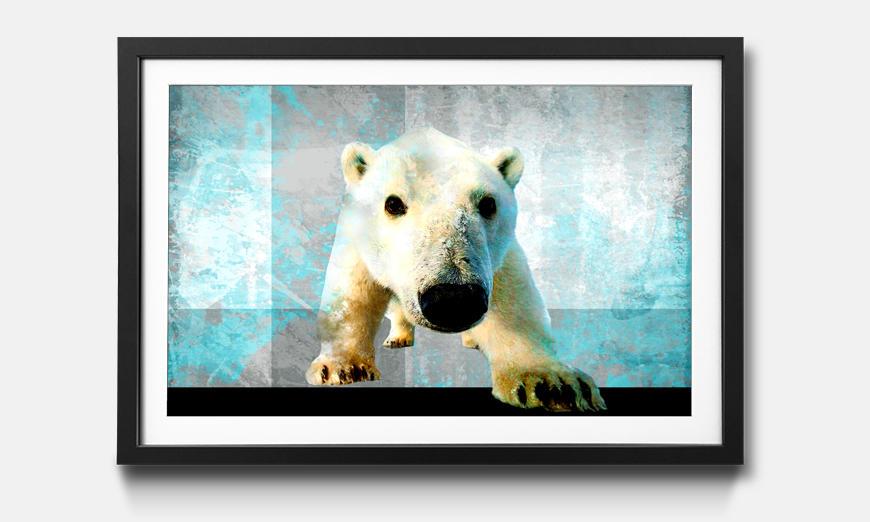 Bild gerahmt Little Icebear