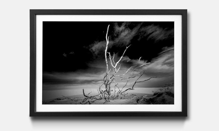 Das gerahmte Bild Desert Landscape
