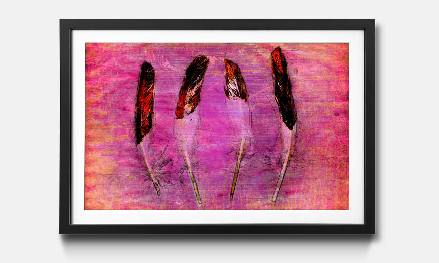 Das gerahmte Bild Feathers and Pink
