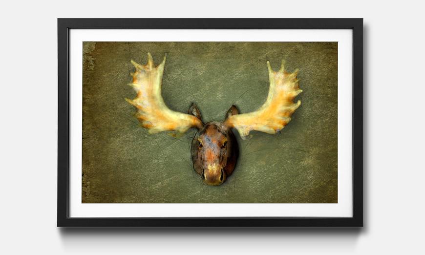 Das gerahmte Bild The Elk