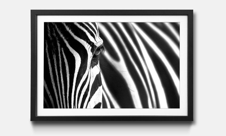 Das gerahmte Wandbild Animal Stripes
