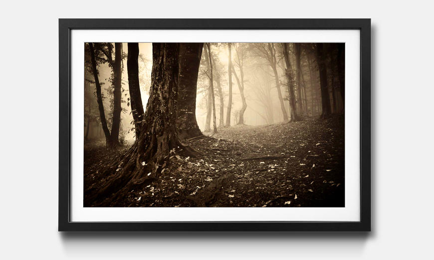 Das gerahmte Wandbild Enchanted Forest