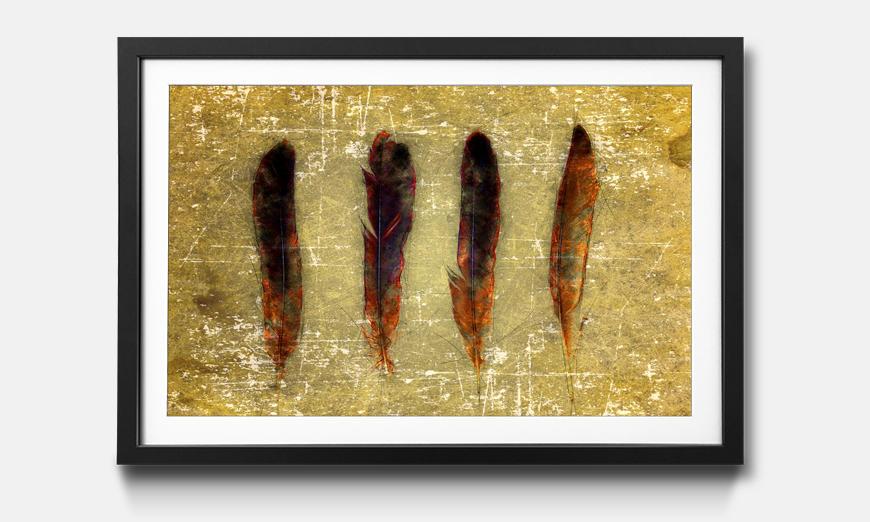 Der gerahmte Druck Four Feathers