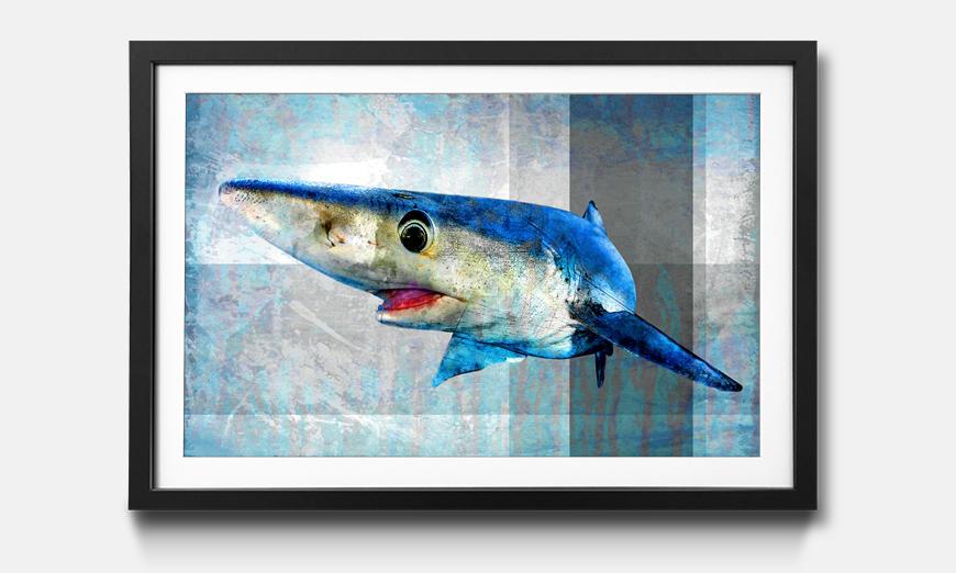 Der gerahmte Druck Mr. Shark