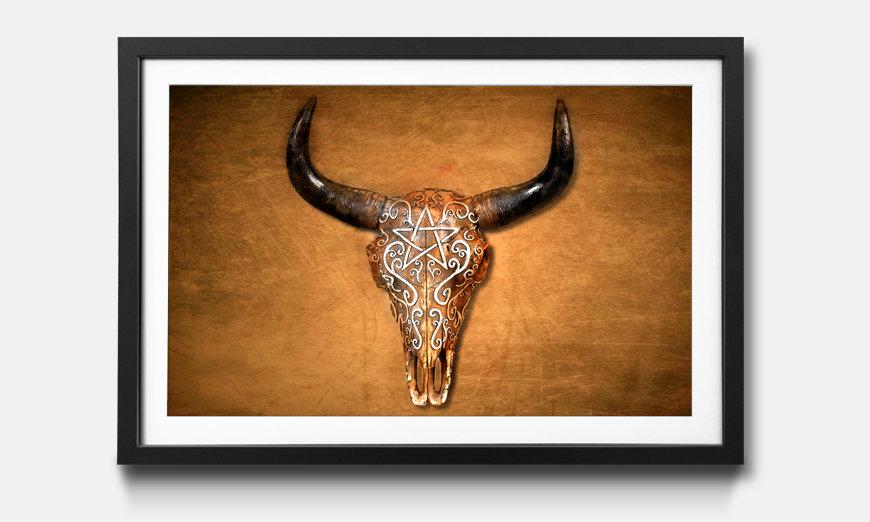 Der gerahmte Kunstdruck Bison Skull