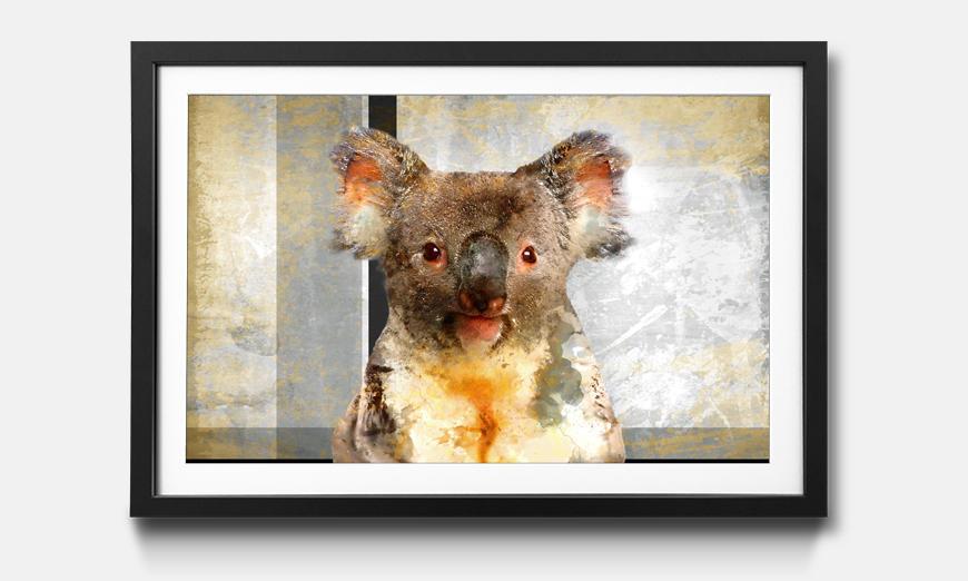 Der gerahmte Kunstdruck Chill Koala