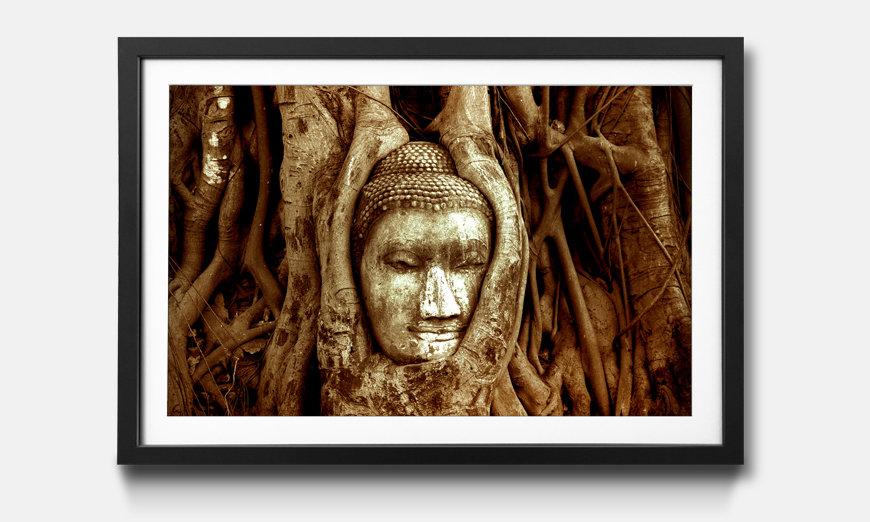 Der gerahmte Kunstdruck Deep Rooted