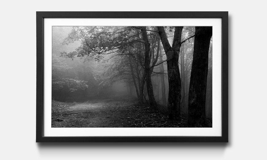 Der gerahmte Kunstdruck Green Forest