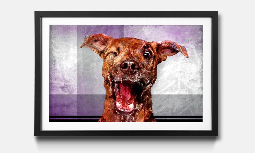 Der gerahmte Kunstdruck Happy Dog