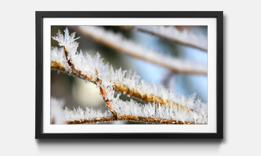 Der gerahmte Kunstdruck Wintertime